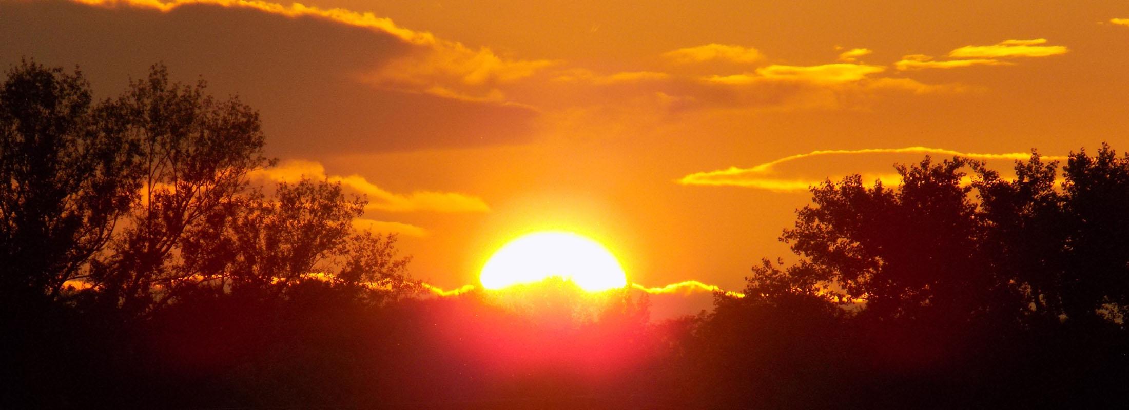 Západ slunce pře sles